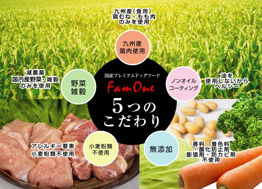 FamOne(ファムワン)5つのこだわり