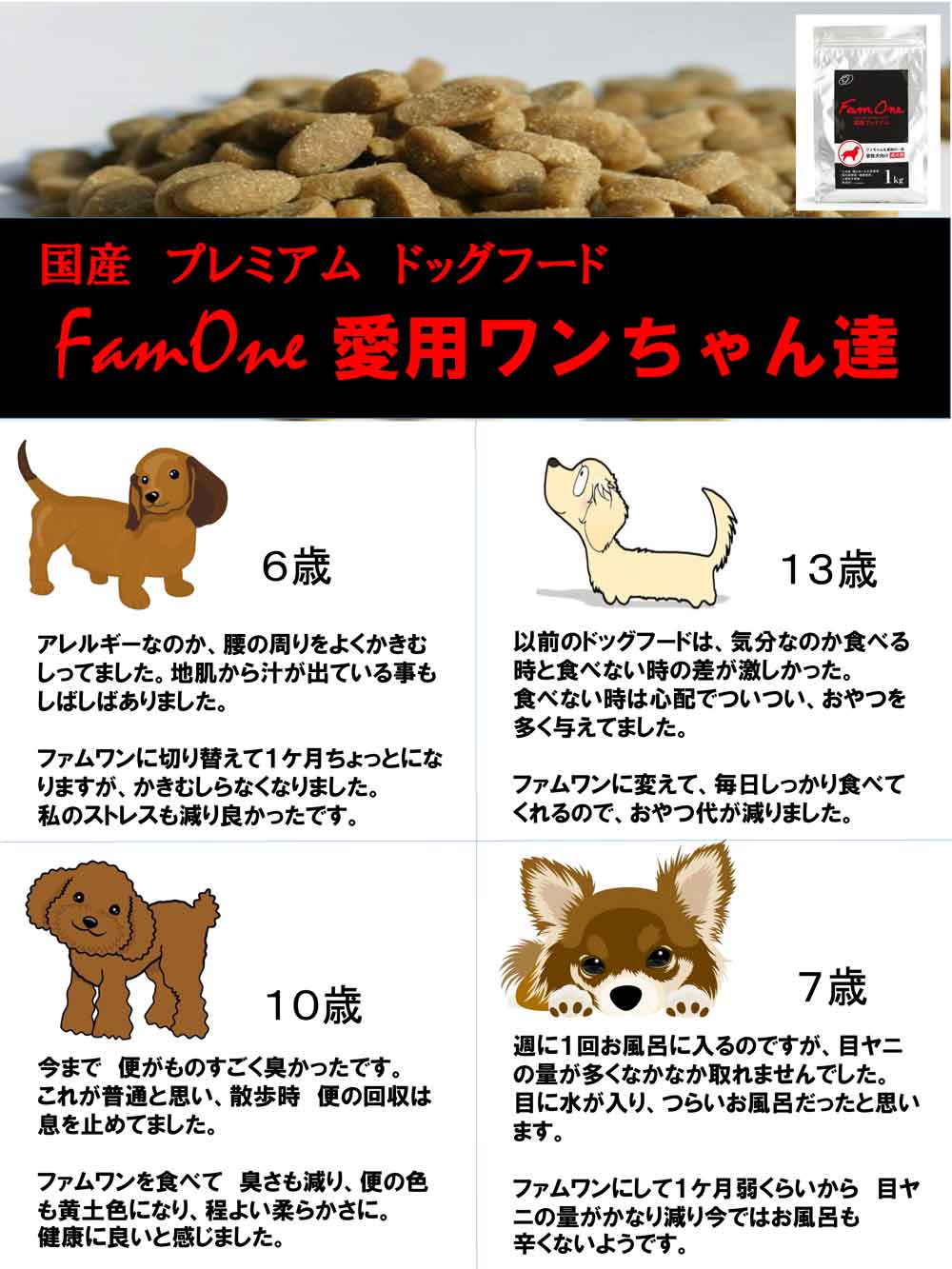 FamOne愛用ワンちゃん達1